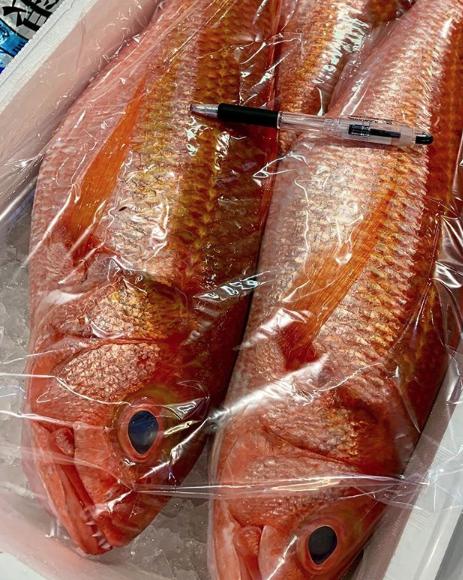 Los peces acumulan restos de medicamentos y productos de higiene